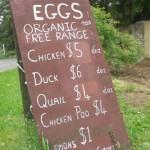 organiceggs neuseeland1 150x150 Einkaufen zu Ostern in Neuseeland