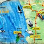 bird trail map web 150x150 Nature Coast Bird Trail