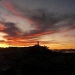 yacht tours Yacht Touren   Ein bezahlbares Erlebnis in Neuseeland