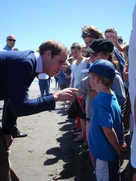 prinz william Prinz William auf Kapiti Island, Neuseeland