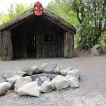 IMG 1586 150x150 Heiße Quellen, Geysire und Maori Kultur
