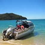 IMG 2723 150x150 Mit Robben schwimmen im Abel Tasman National Park